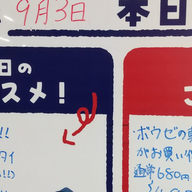 9月3日(金)鮮魚朝市開催中
