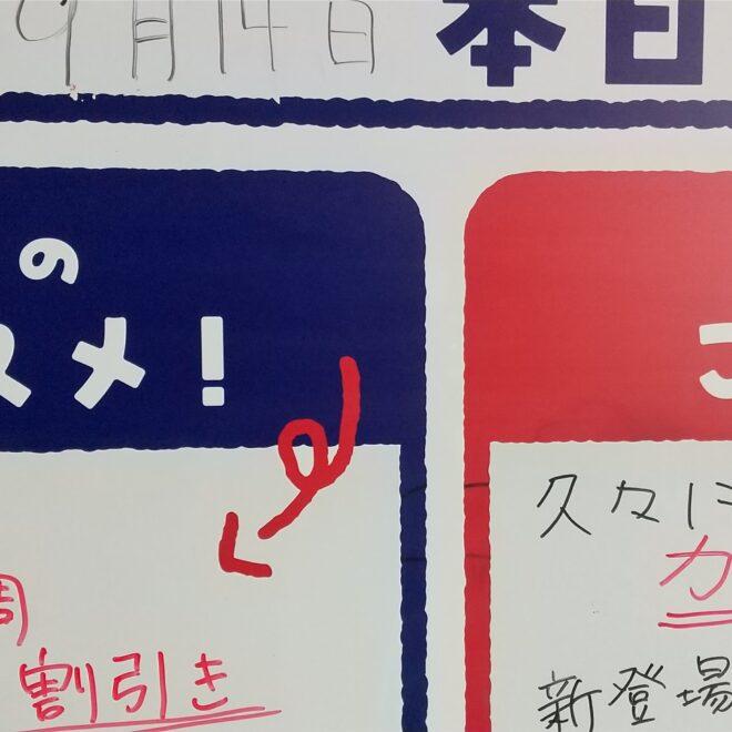 9月14日(火)鮮魚朝市開催中