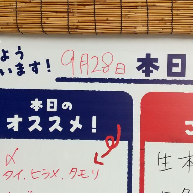 9月28日(火)鮮魚朝市開催中