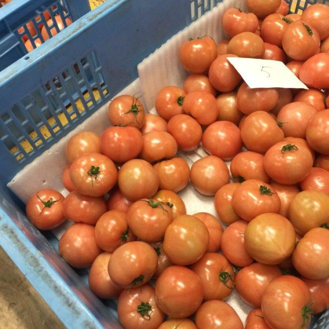 石川さんちのトマトがでました。