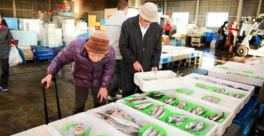 たくさん並ぶ魚を見定める夫婦